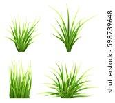 set realistic vector  grass.... | Shutterstock .eps vector #598739648