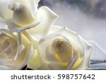 Stock photo white rose close up can use as background space for text 598757642