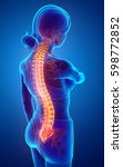 3d illustration of women... | Shutterstock . vector #598772852