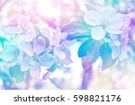 blossoming branch apple. bright ... | Shutterstock . vector #598821176