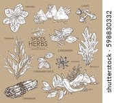 collection of herbs and spice.... | Shutterstock .eps vector #598830332
