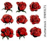 nine red roses | Shutterstock . vector #59893171