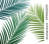 palm leaves background. vector... | Shutterstock .eps vector #599002055