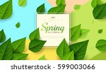 Spring background with flying green leaves and square frame on trendy geometric backdrop. Vector illustration. Fresh template design for posters, flyers, brochures or vouchers.  | Shutterstock vector #599003066
