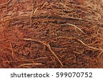 Coconut Close Up Texture....
