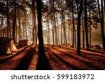 forest. | Shutterstock . vector #599183972