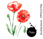 hand drawn watercolor poppy... | Shutterstock . vector #599215706