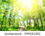 bokeh in the spring forest with ... | Shutterstock . vector #599331302