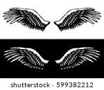 vintage wings isolated on white ... | Shutterstock .eps vector #599382212