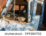 Old Rusty Truck Thrown In...