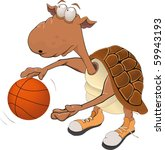 Turtle the basketball player