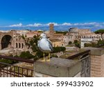 seagull and roman ruins in rome ... | Shutterstock . vector #599433902