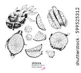 vector hand drawn set of exotic ... | Shutterstock .eps vector #599525312