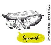 squash sketch. harvesting | Shutterstock .eps vector #599554622