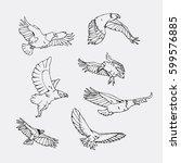 birds of prey set. bird... | Shutterstock .eps vector #599576885