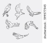 birds of prey set. bird... | Shutterstock .eps vector #599577545
