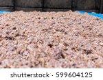 shrimp paste  sun dried shrimp... | Shutterstock . vector #599604125
