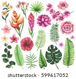 floral set of watercolor... | Shutterstock . vector #599617052