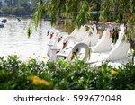 Swan Boat At The Park