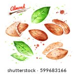 collection of watercolor... | Shutterstock . vector #599683166