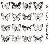 Stock vector butterflies graphic vector set 599720156