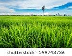 green farm with blue sky   Shutterstock . vector #599743736