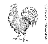 illustration of a cock ... | Shutterstock . vector #599764718