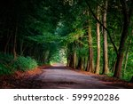 magical tunnel and pathway... | Shutterstock . vector #599920286