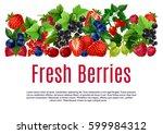 berries poster or banner... | Shutterstock .eps vector #599984312
