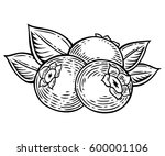 blueberry berry  fruit  leaf ... | Shutterstock .eps vector #600001106
