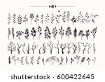 Tree branches & plants silhouettes made with ink. Big hand drawn collection of rustic and floral design elements: wood twigs, sticks, forest, driftwoods, flowers & leaves. Isolated vector set.