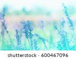beautiful blue color tone... | Shutterstock . vector #600467096