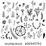 rustic set of natural... | Shutterstock .eps vector #600545792