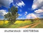 Summer Landscape Road In...