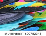 feathers texture. beautiful... | Shutterstock . vector #600782345