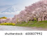 beautiful mountain fuji and... | Shutterstock . vector #600837992