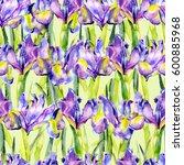 Glade Of Summer Irises....