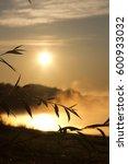 dawn. dawn over the river....   Shutterstock . vector #600933032