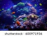 underwater background.... | Shutterstock . vector #600971936