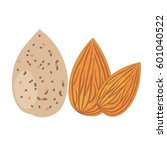 almonds  isolated objects on... | Shutterstock .eps vector #601040522