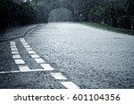 heavy rain falls on the rural... | Shutterstock . vector #601104356