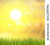 fresh green grass. sunburst... | Shutterstock .eps vector #601239596