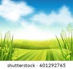 vector illustration of a green... | Shutterstock .eps vector #601292765