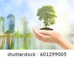 male hands holding tree growing ... | Shutterstock . vector #601299005