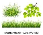 vector collection of green... | Shutterstock .eps vector #601299782