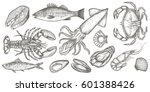 seafood hand drawn vector... | Shutterstock .eps vector #601388426