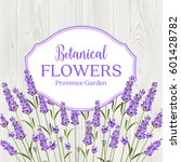 beauty lavander label design... | Shutterstock .eps vector #601428782