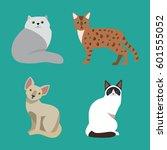 cat breed cute pet portrait... | Shutterstock .eps vector #601555052