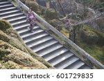 a woman wear kimono walking on... | Shutterstock . vector #601729835