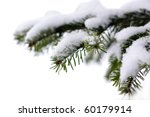 Christmas Evergreen Spruce Tre...